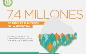 El Seguro Verde ya plantó 9.200 hectáreas de bosques
