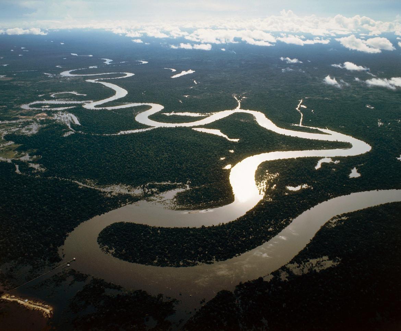 El verdadero desafío es recuperar el Amazonas, no sólo apagar el fuego
