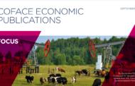 """Estrategia """"Made in Russia"""", un instrumento de diversificación económica de efectos limitados"""